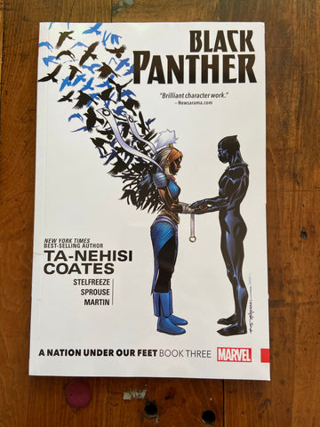 Black Panther: An Nation Under Our Feet, Book Three
