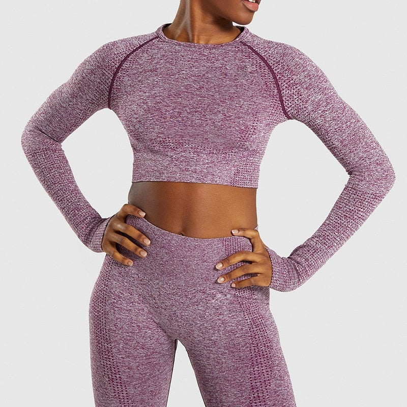 Women Seamless Gym Clothing Yoga Set Fitness Leggings Cropped Shirts Sport Suit