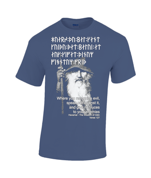 Havamal 127 - Where you Recognise Evil Heavy Cotton T-Shirt