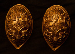 Baltic Viking Turtle Brooches TB21