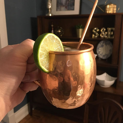 Moscow Mule with Canalside Soda Ginger Beer and Dillion's Vodka