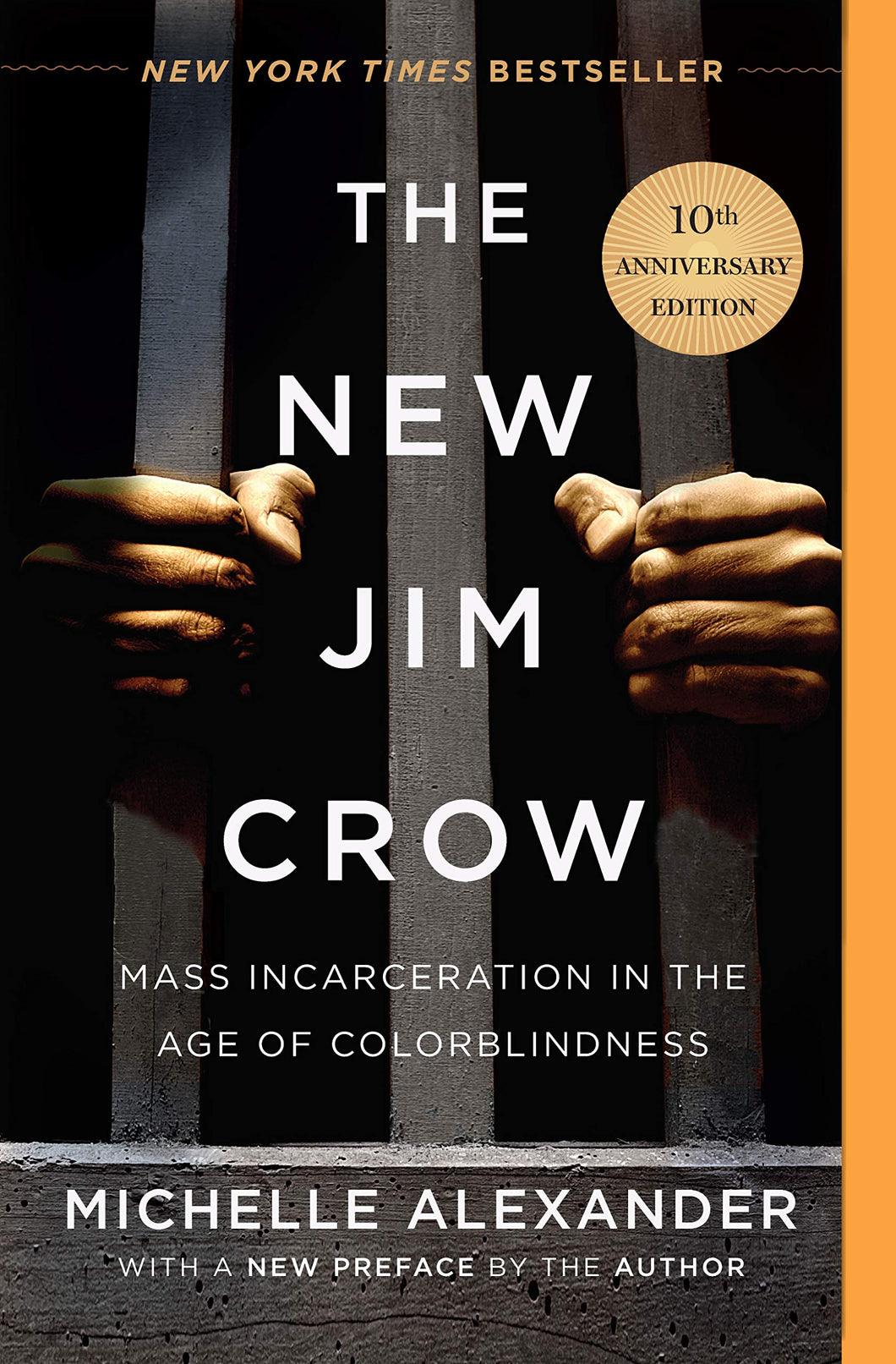 The New Jim Crow // Mass Incarceration in the Age of Colorblindness
