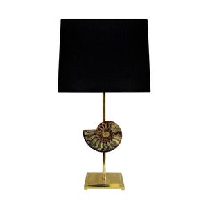 AMMONITE FOSSIL TABLE LAMP BY MICHAEL LAUT - Flair Home Collection
