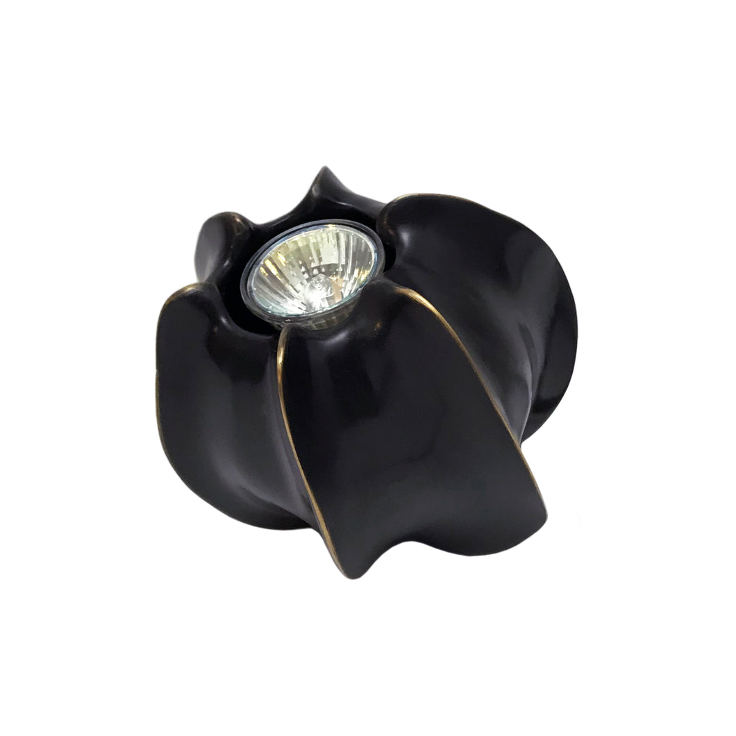 BRONZE CARAMBOLA ACCENT LAMP - Flair Home Collection