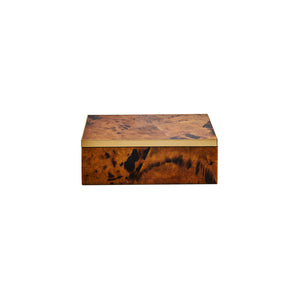 PARKER BOX IN TIGER SHELL - Flair Home Collection