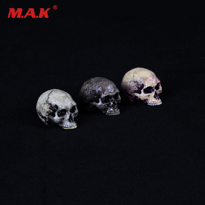 1:6 Skulls Head Model Horror Scene Accessories For 12   inches Action Figure