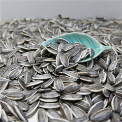 Sunflower Seeds 363