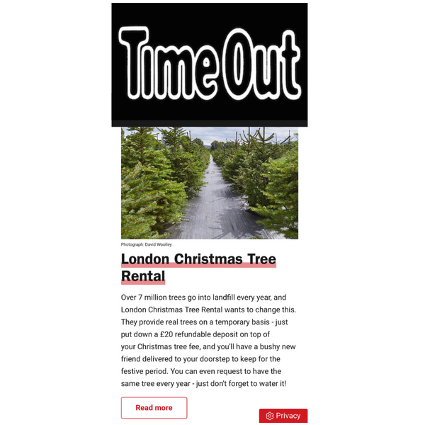 Time Out Press Coverage London Christmas Tree Rental