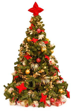 Decorated Sustainable Christmas Tree in pot - London Christmas Tree Rental