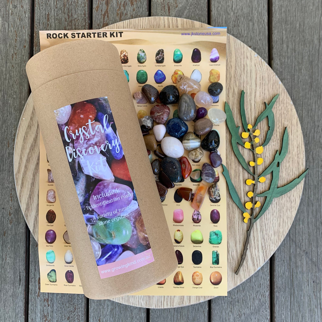 Crystal Discovery Kit - Gems and Poster - Growing Kind