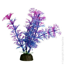 Load image into Gallery viewer, AQUA ONE BETTASCAPE AMBULIA PURPLE ORNAMENT - City Country Pets and Supplies