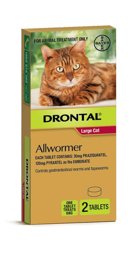 DRONTAL ALLWORMER FOR LARGE CATS (2 TABLETS - 1 PER 6KG) - City Country Pets and Supplies