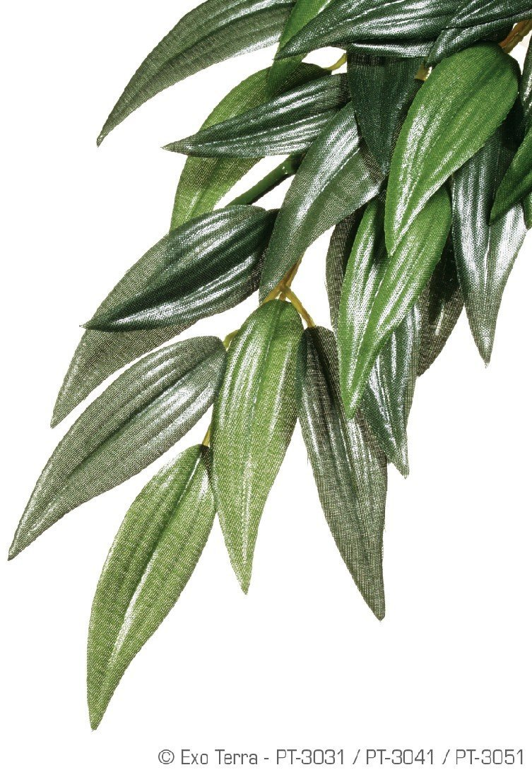 EXO TERRA JUNGLE PLANT RUSCUS LARGE SILK - City Country Pets and Supplies