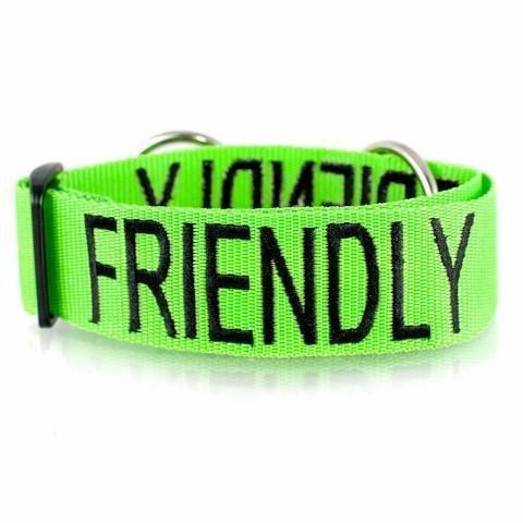 FRIENDLY SEMI SLIP DOG COLLAR LARGE/XX-LARGE (46-71CM NECK X 38MM WIDTH) - City Country Pets and Supplies