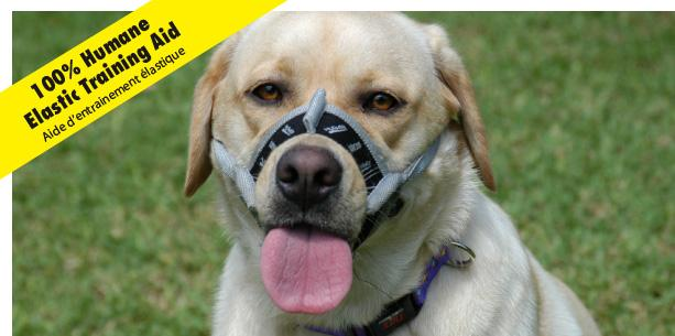 HUSHER TRAINING AID MUZZLE SIZE 1 - City Country Pets and Supplies