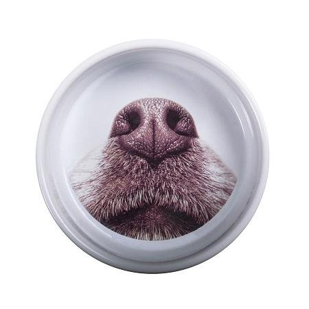 MINISTRY OF PETS CERAMIC DOG FEEDING BOWL 16X7X16CM - City Country Pets and Supplies