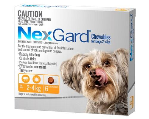 NEXGARD FLEA AND TICK TREATMENT CHEWS FOR DOGS 2-4KG 6PK - City Country Pets and Supplies