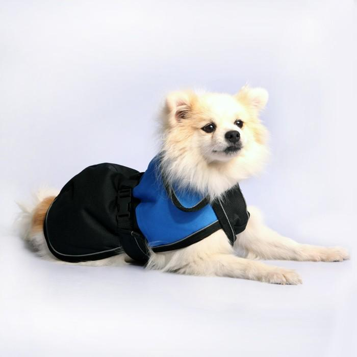 PET ONE BLIZZARD H/DUTY WATERPROOF REFLECTIVE DOG COAT 35CM BLUE - City Country Pets and Supplies