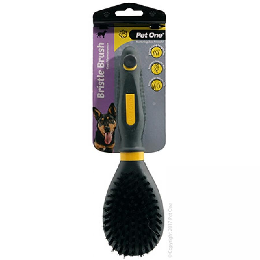 PET ONE GROOMING BRISTLE BRUSH (L) - City Country Pets and Supplies