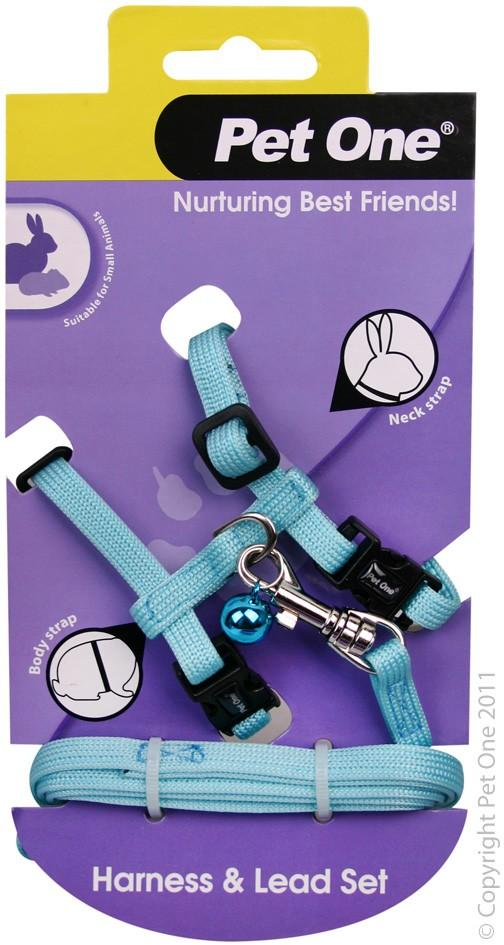PET ONE LEASH & HARNESS RABBIT, GUINEA PIG, FERRET AQUA - City Country Pets and Supplies