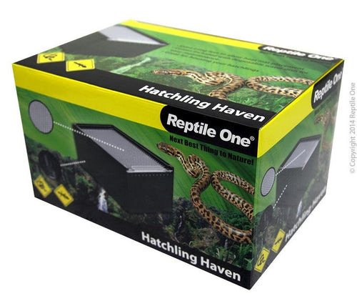 REPTILE ONE HATCHLING HAVEN BLACK ACRYLIC W/ANTI-TIP WATER DISH 200WX300DX150H MM - City Country Pets and Supplies