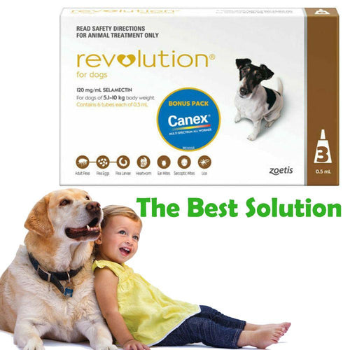 REVOLUTION STOP PARASITES FOR DOGS - City Country Pets and Supplies
