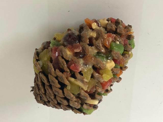 SMALL PINECONE BIRD TREAT WITH FRUIT MIX AND HOOK - City Country Pets and Supplies