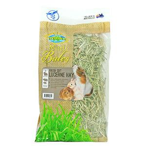 VETAFARM FRESH CUT LUCERNE HAY (APPROX 800G) - City Country Pets and Supplies