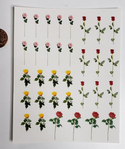 Rose Decals