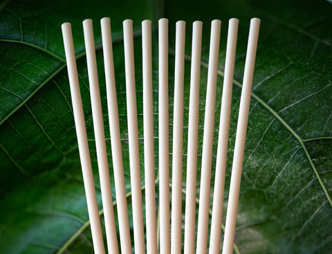 Avocado SEED Straws | Extra Strength Biodegradable 8.27""