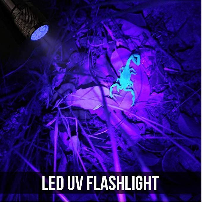 Ultraviolet LED Flashlight