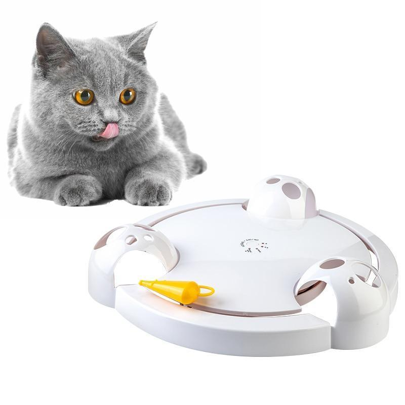 Interactive Automatic Cat Play