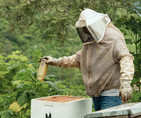 The Beekeepers in California