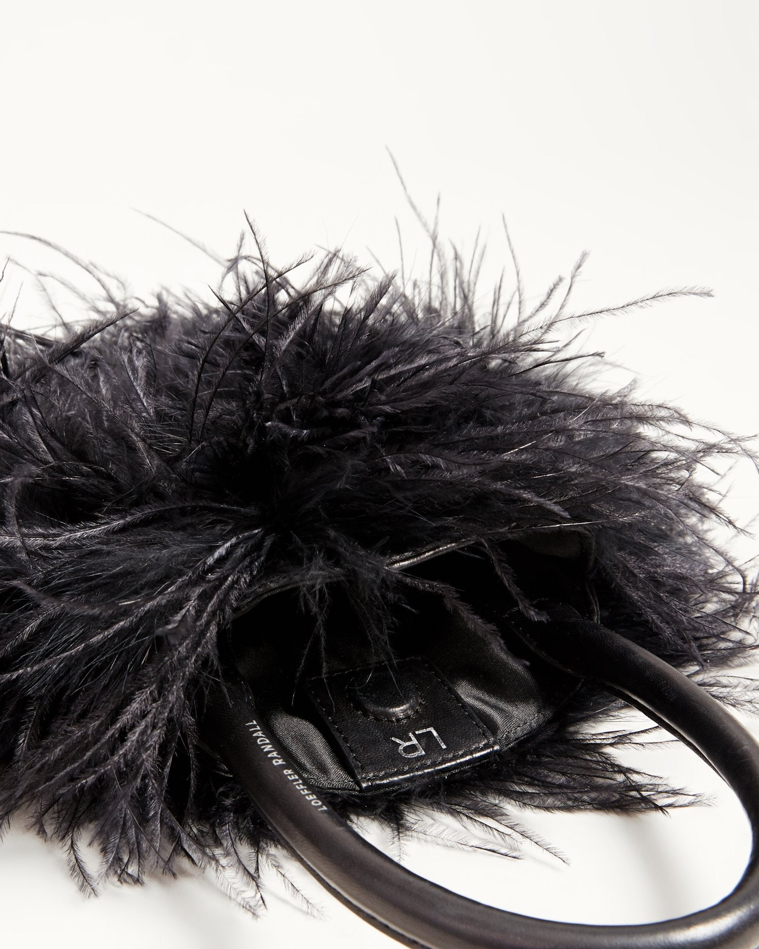 Color: Black feathers; Color: Black feathers