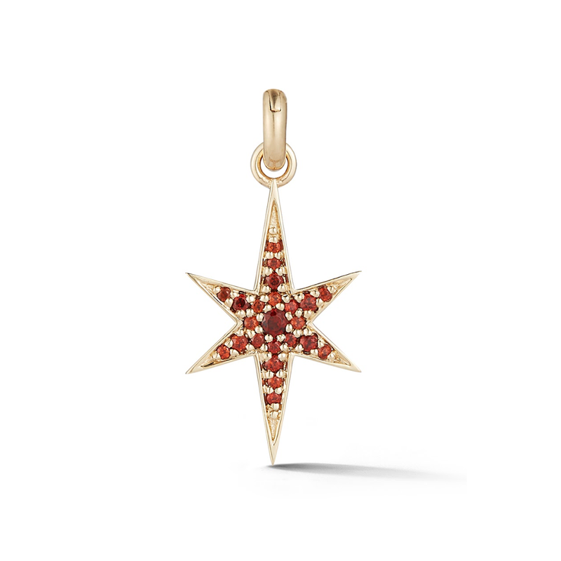 14K Gold and Garnet Star Charm
