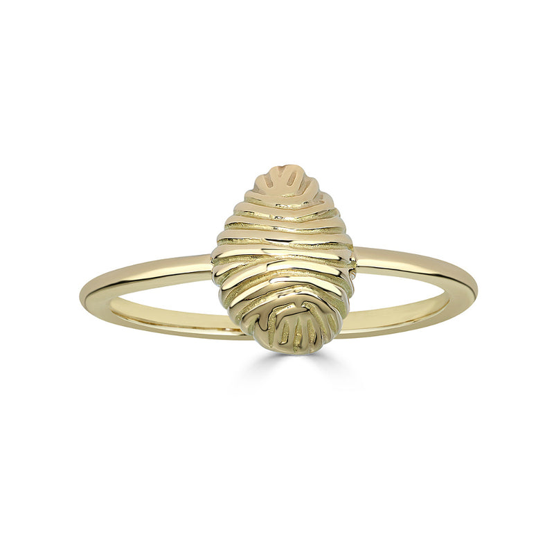 SMALL THREAD AND SHELL RING