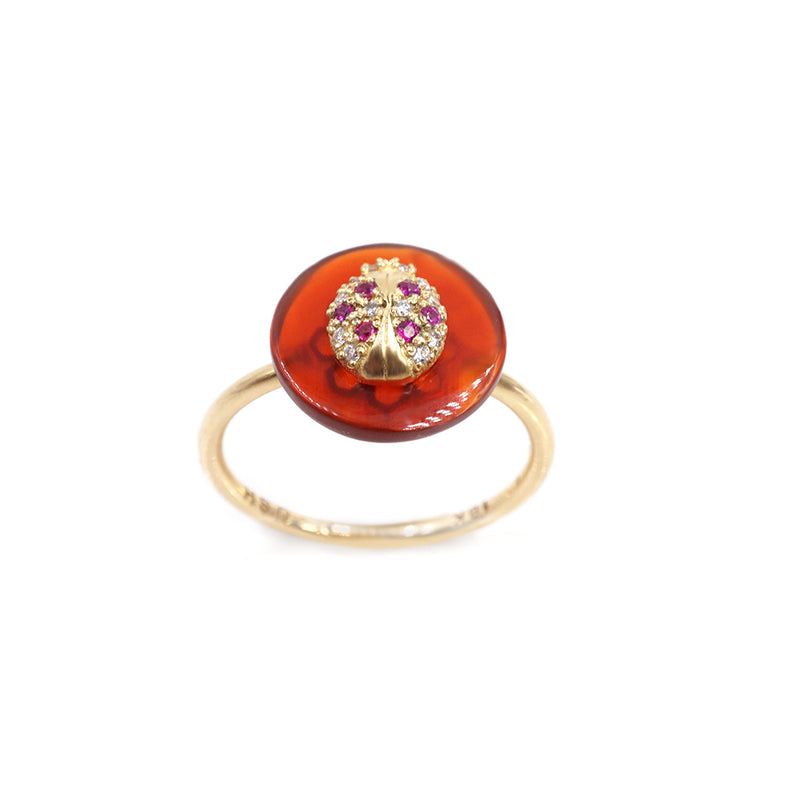 Co-Exist Ladybug on Gemstone Ring