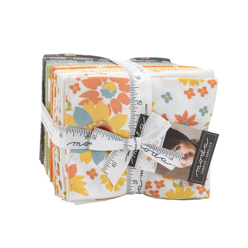 Cozy Up Fat Quarter Bundle by Corey Yoder - RESERVATION