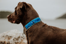 Load image into Gallery viewer, Handpainted Collar - Lightkeeper