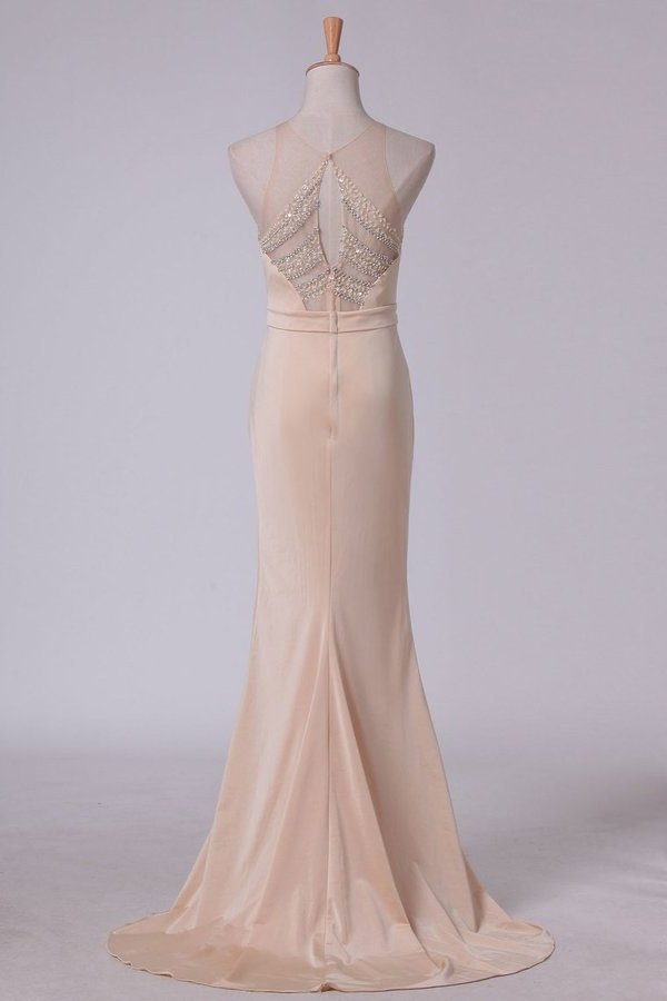 Evening Dresses Sheath Scoop Spandex With Beading Sweep PKA21PNJ