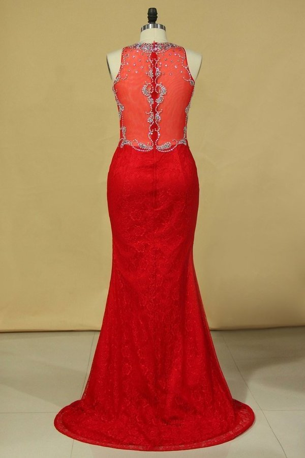 Red Plus Size Prom Dresses Scoop Beaded Bodice Sweep Train P718ALTZ