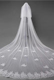 3D Flowers Lace Appliques Tulle Ivory Wedding Veils