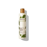 Moisture Replenish Shampoo