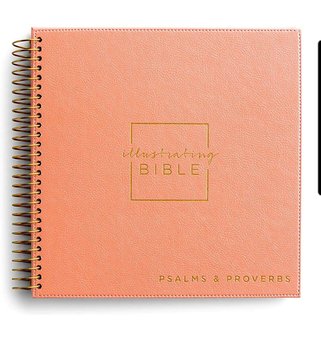 NIV Illustrating Bible – Books of Psalms & Proverbs