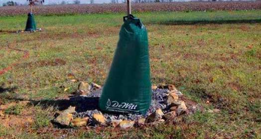 DeWitt 20-gal. Tree Watering Bag