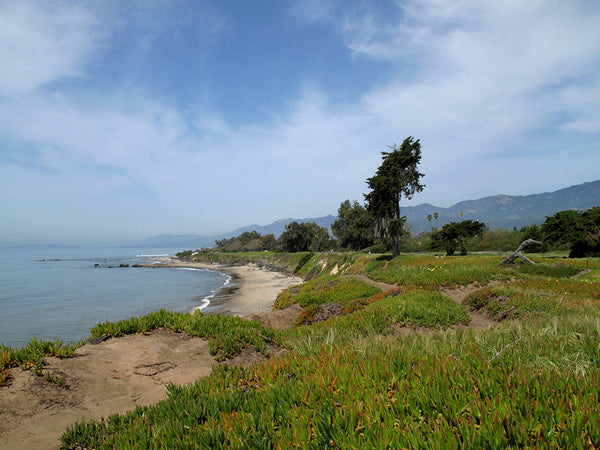 Earth Day in Santa Barbara