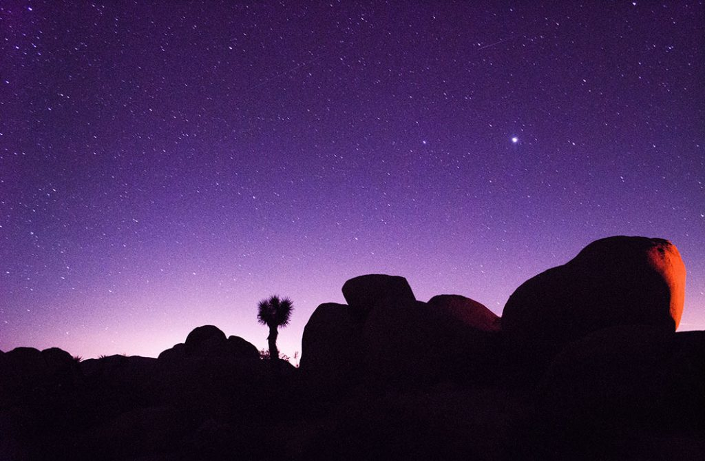 02-MOAD-Day3-Pioneertown&JoshuaTree-Toad&Co_blog