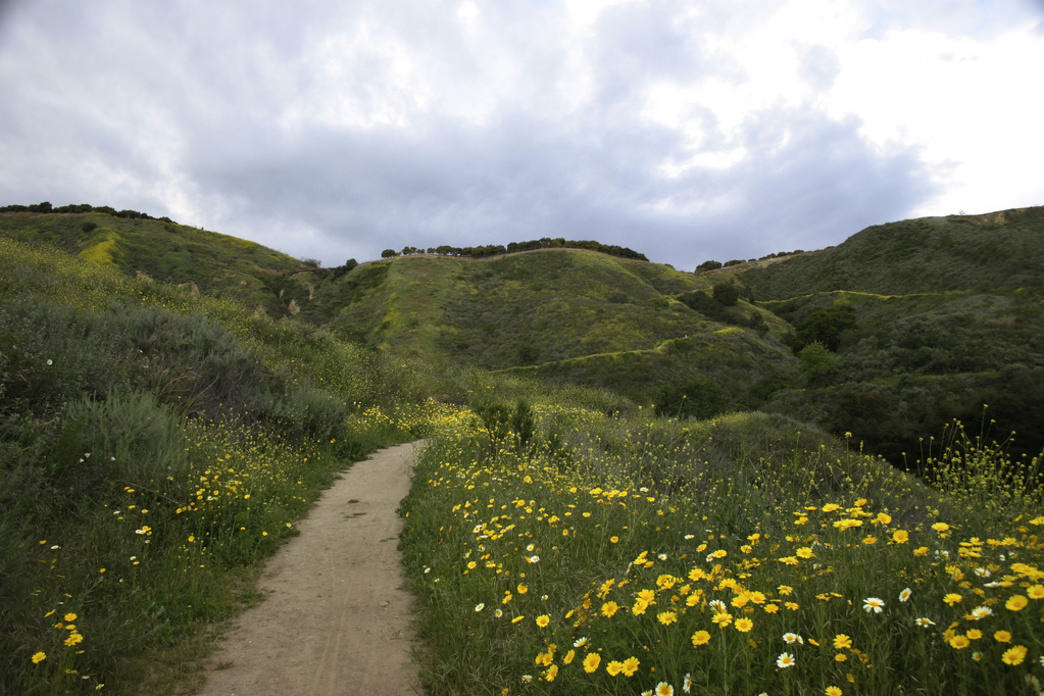 The rolling hills of Arroyo Verde Park offer the perfect place to enjoy a nice stroll above the Pacific Ocean