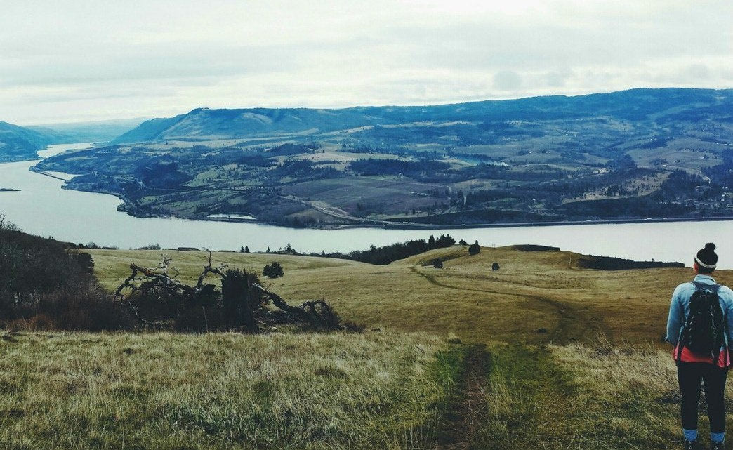Admiring the views of the Columbia River Gorge