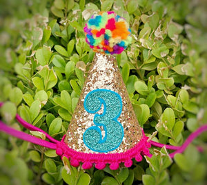 Mini Birthday Party Hat, Rainbow Birthday Party Hat, NUMBERS 1/2-5